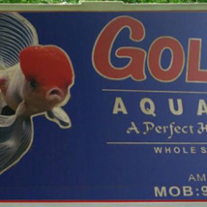 golden-aquarium-amaravila-trivandrum.jpg