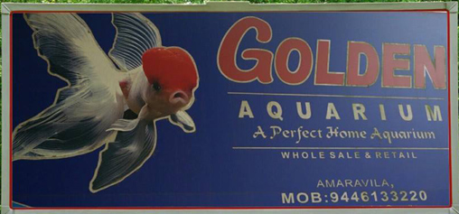 golden-aquarium-amaravila-trivandrum